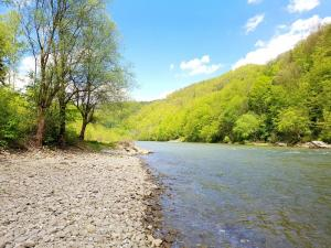 rzeka Dunajec camping