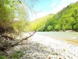 wietrznice rzeka Dunajec